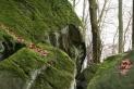 Luxemburger Sandstein in derTeufelsschlucht